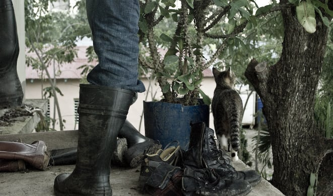 person taking off gum boots by a cat