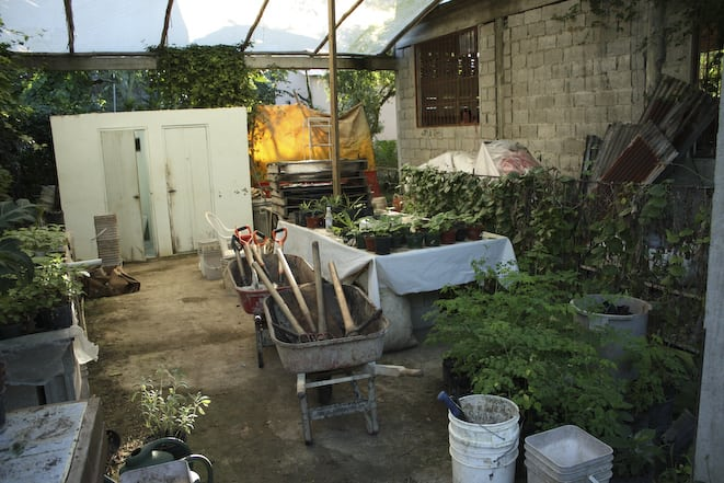 Greenhouse and permaculture nursery