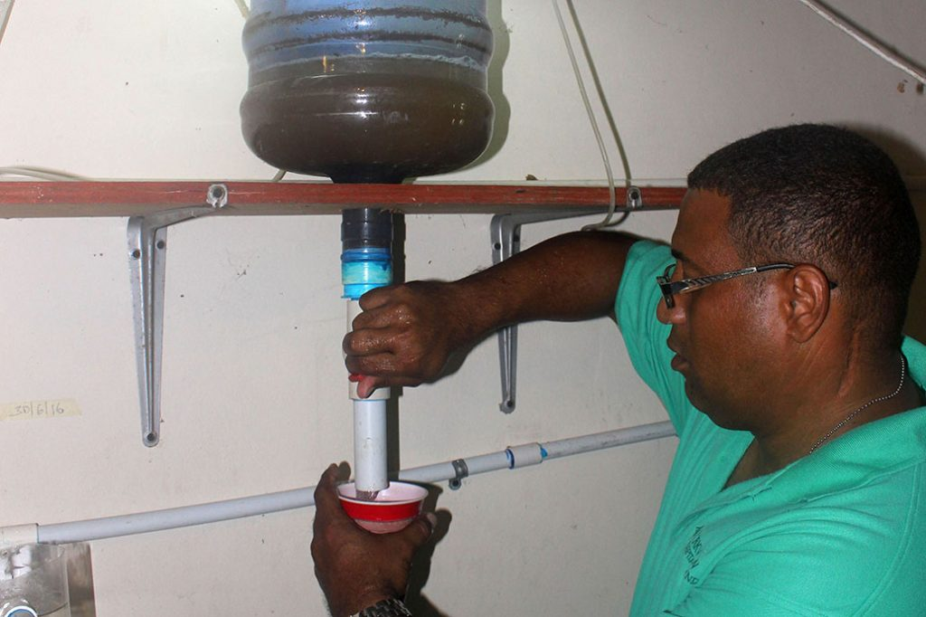 recycled gallon water jug used for producing food for the tilapia hatchlings