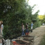 Permaculture Farmers Planting