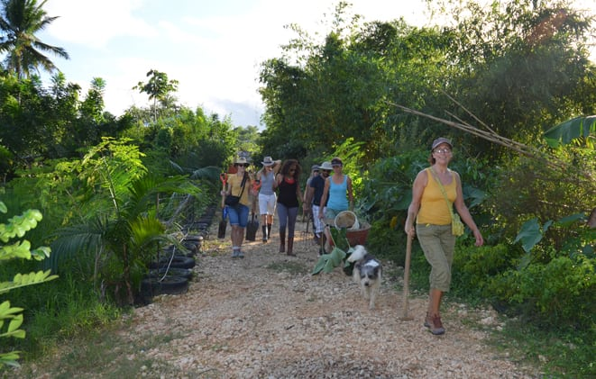Group of permaculture farmers walking to their site