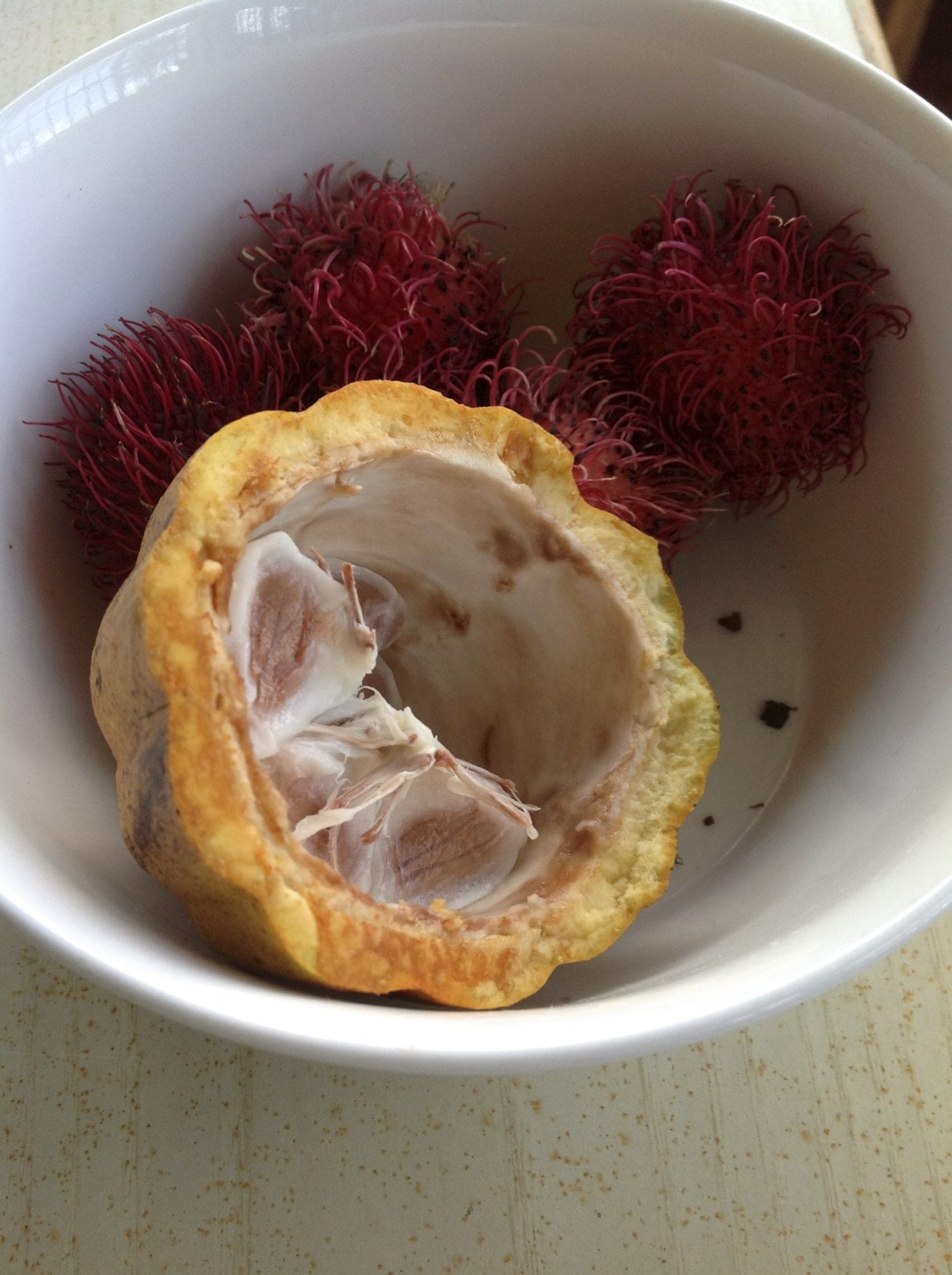cacao and rambutan