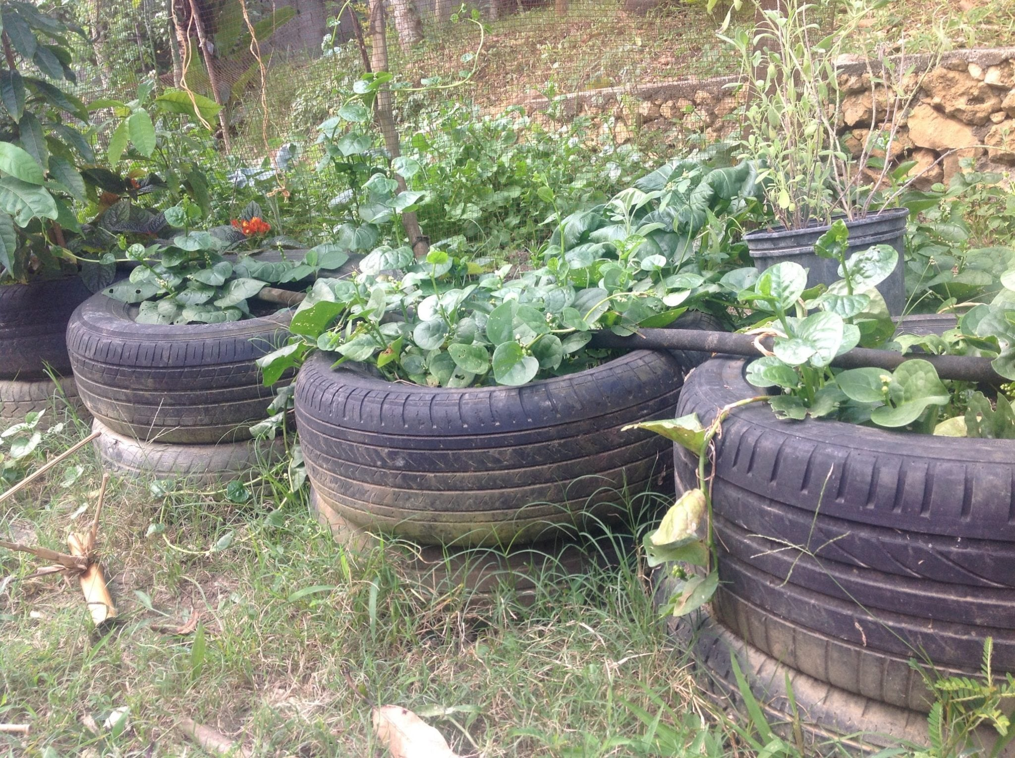 recycled-tires