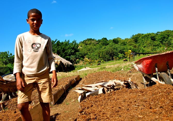 Dominican kid helping to improve soil