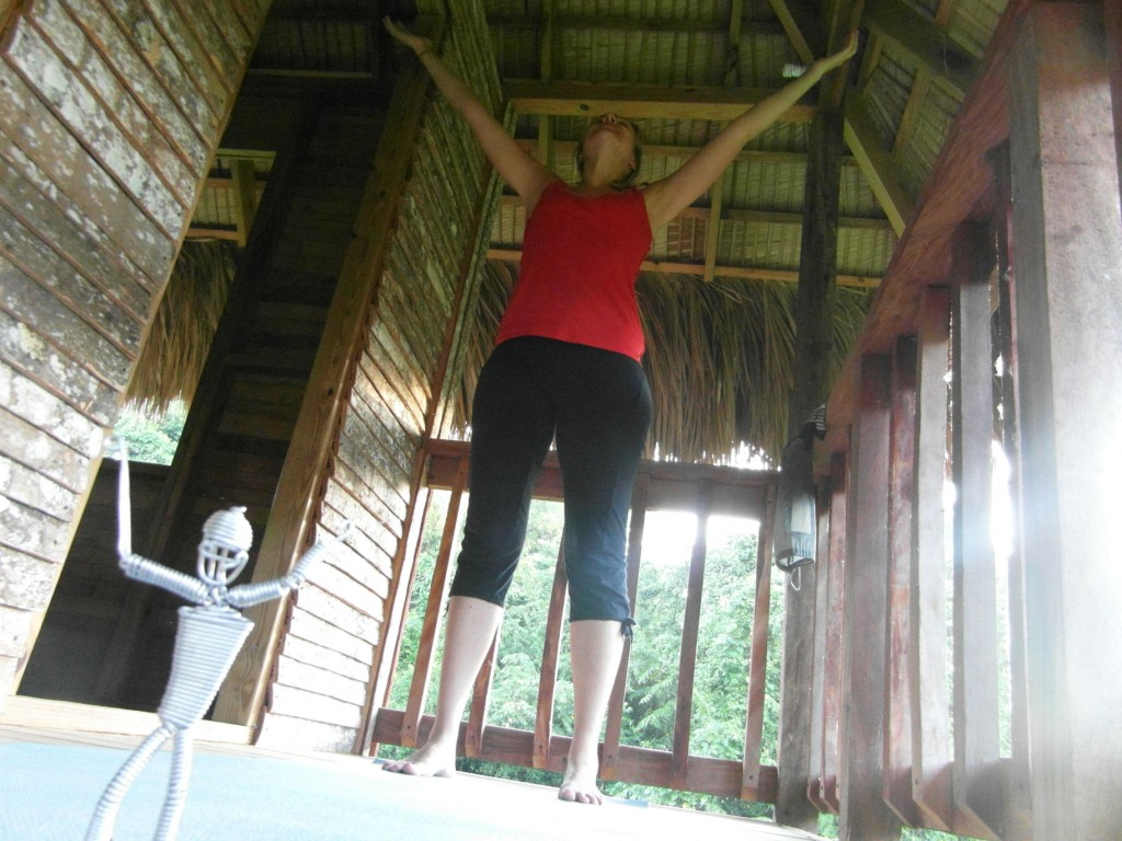 yoga at taino farm