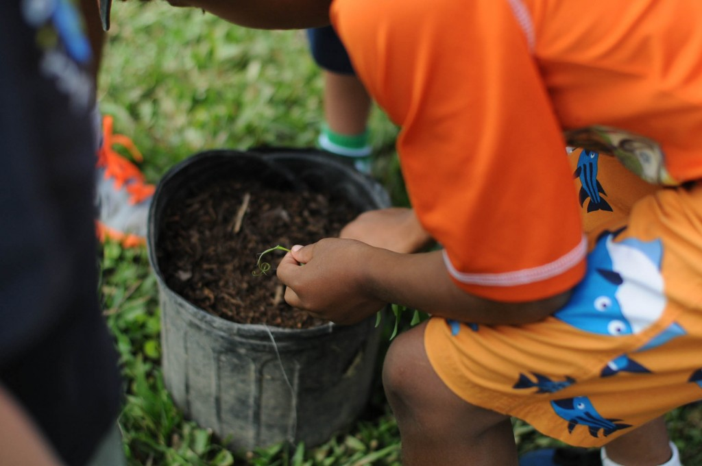 One of the first graders from ISS learning how to plant seeds.