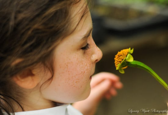 Your garden can teach you a lot about life… Stop and smell the flowers!