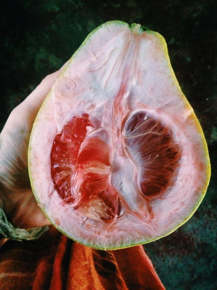 You'd never guess the contents of this beautiful fruit from the outside!