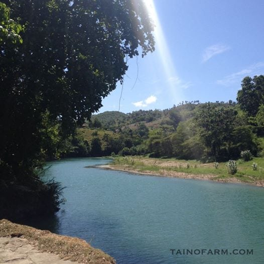 Gotta love this beautiful river and the location right at Taino Farm is supreme!