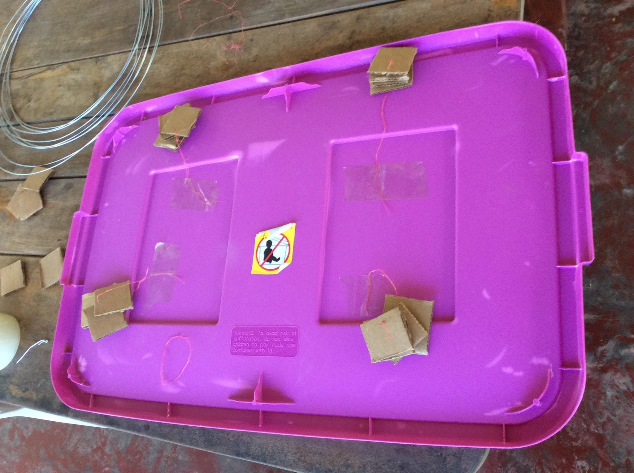 cardboard for the egg production